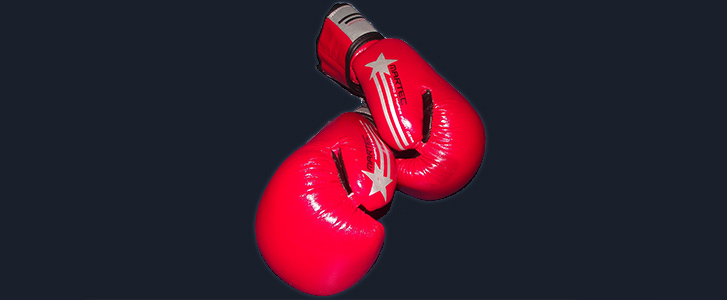 10oz Boxing Gloves Red - £30.00